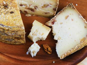 Away from the herd – Tuscan sheep cheese