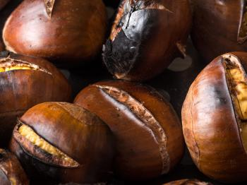 The chestnut bounty